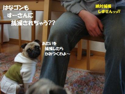 DSC03166_20110831030214.jpg