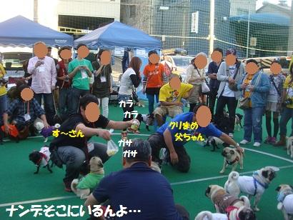 DSC04163_20130322050112.jpg