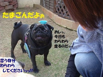 DSC04226_20110828174059.jpg
