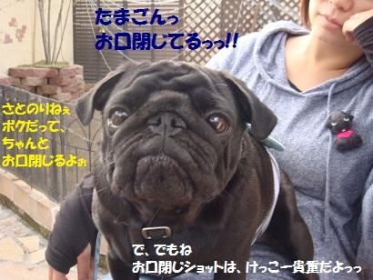 DSC04347_20110828174059.jpg