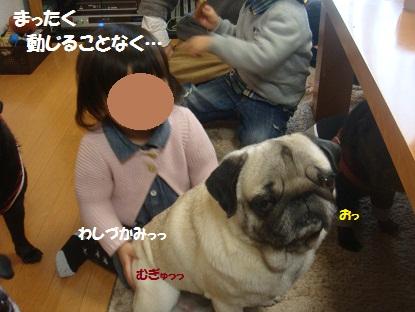 DSC08902.jpg