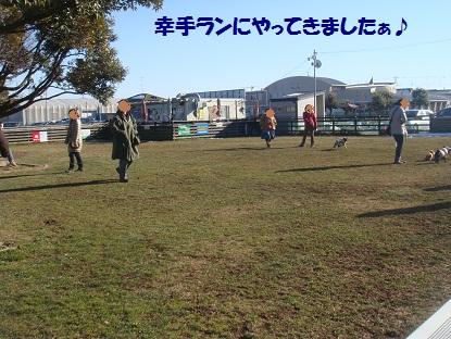 DSC09214_20130302052408.jpg