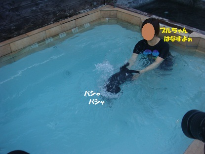 DSC09518_20130317133123.jpg