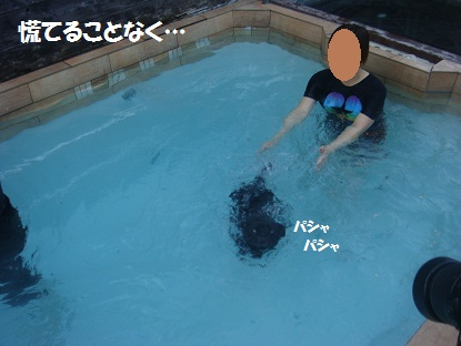 DSC09519.jpg