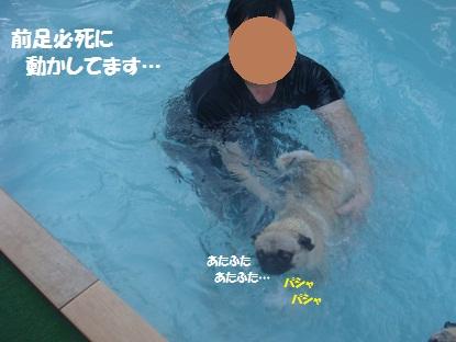 DSC09548_20130317140650.jpg