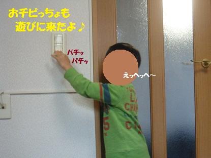 DSC09873.jpg