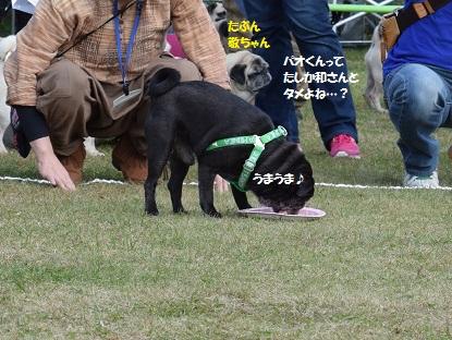 DSC_1624_R.jpg