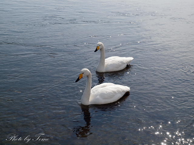 edited_2012-02-26-(336).jpg