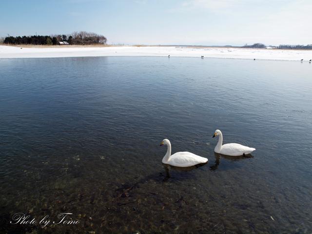 edited_2012-02-26-(338).jpg