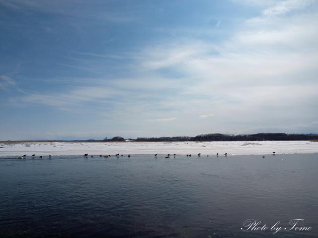 edited_2012-02-26-(362).jpg