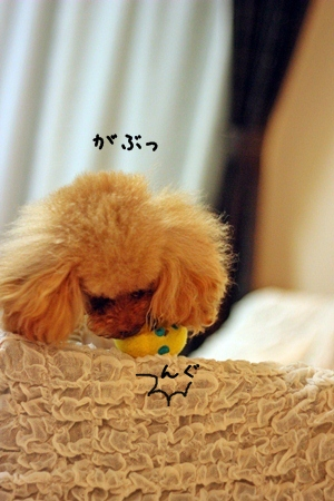 022-20121019-211512.jpg