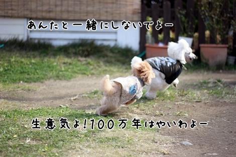 052-20121125-192837.jpg