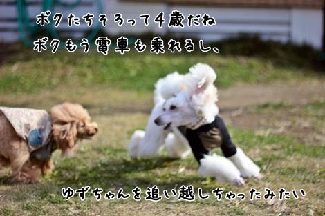 066-20121125-192837.jpg