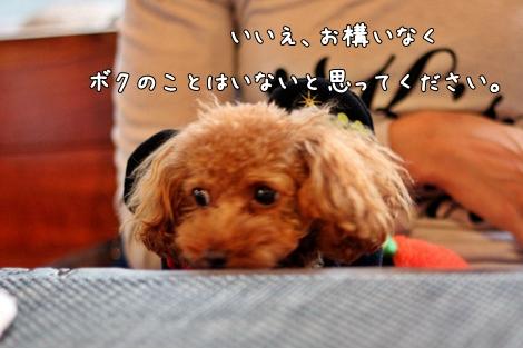 123-20121029-212616.jpg