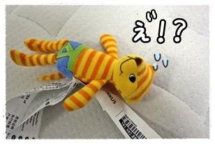 20120305-116.jpg
