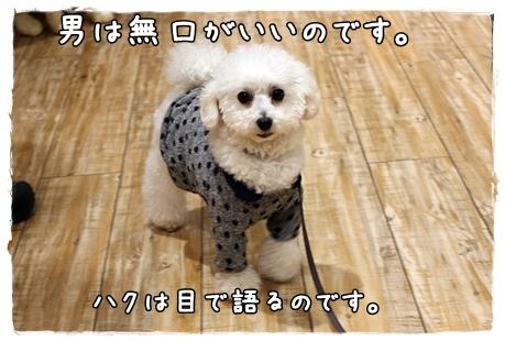 20120321_192.jpg