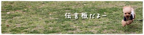 20120424_080.jpg