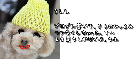 20120512-2012-02-07_blogtop[1] - コピー