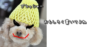 20120512-2012-02-07_blogtop[1]