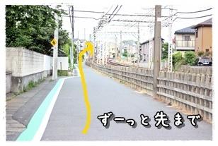 20120531-010.jpg