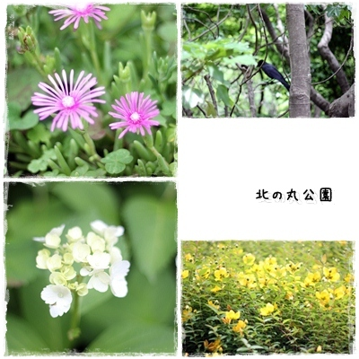 20120606-page_001.jpg