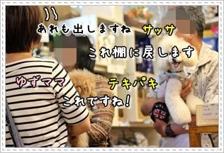 20120615-017.jpg