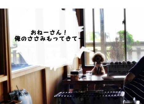 20120717-574.jpg
