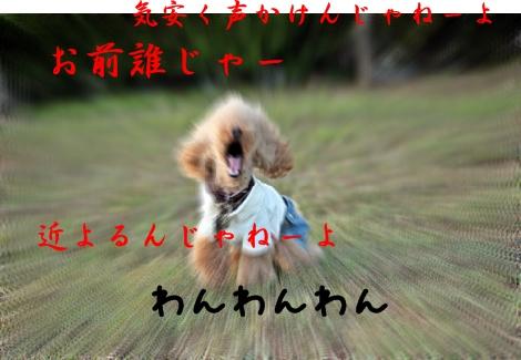 20120903_2083.jpg