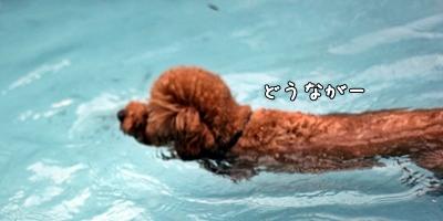 20120911_404.jpg