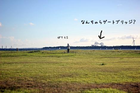 20120917-196.jpg
