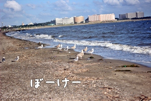 20120919-229.jpg