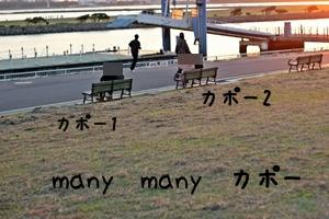 220-20121020-204054.jpg