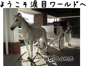 imagesCAKFWKMY-20121030-221400.jpg