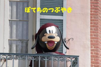 20120405 グーさんエッグ