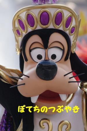 20120419 ミシカグーさん