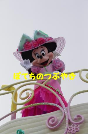 20120429 ミニー