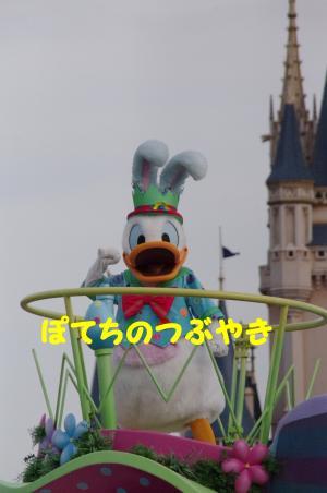 20120513 ドナ