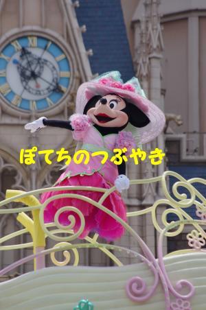 20120524 ミニー