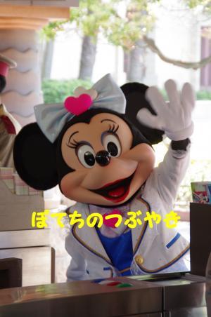 20120527 ミニー