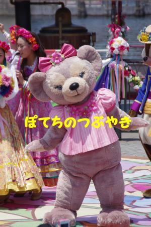 20120527 メイちゃん