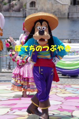 20120527 グーさん