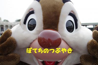 20120531 デール