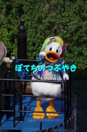 20120715 オアシスドナ