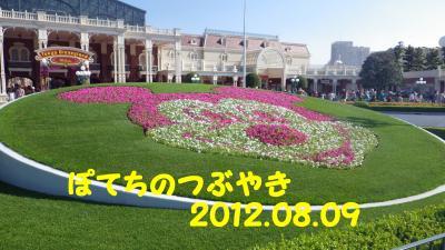 20120809 花壇