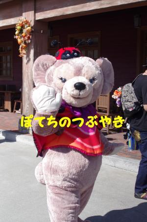 20120909 メイちゃん
