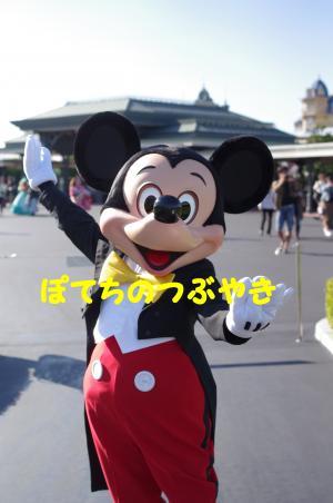 20121004 ミッキー