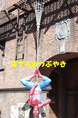 20121026 スパイダーマン