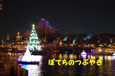20121115 カラーツリー