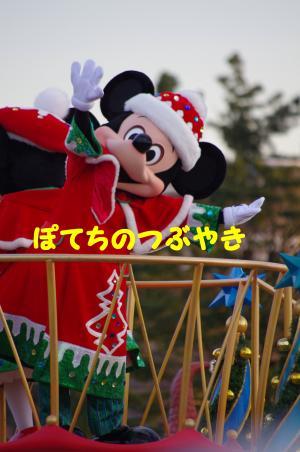 20121115 ミッキー