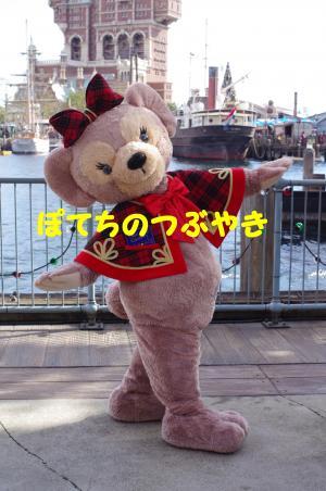 20121115 メイちゃん